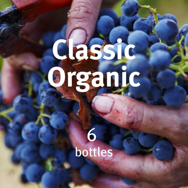 Classic Organic