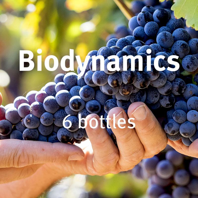 Biodynamics