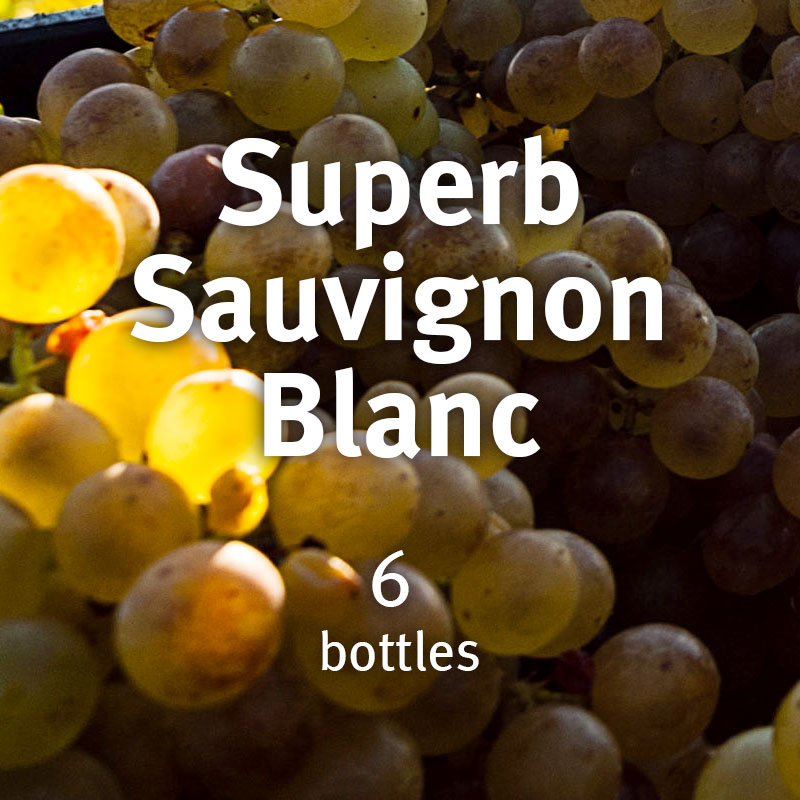 Superb Sauvignon Blanc