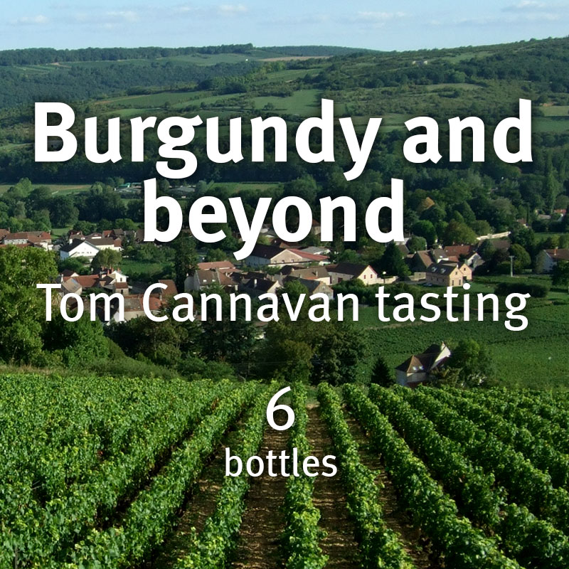 Burgundy and Beyond – Tom Cannavan