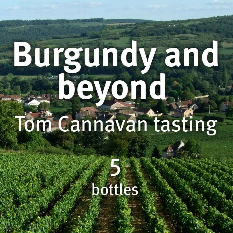 Burgundy and Beyond – Tom Cannavan (5 bottle case)