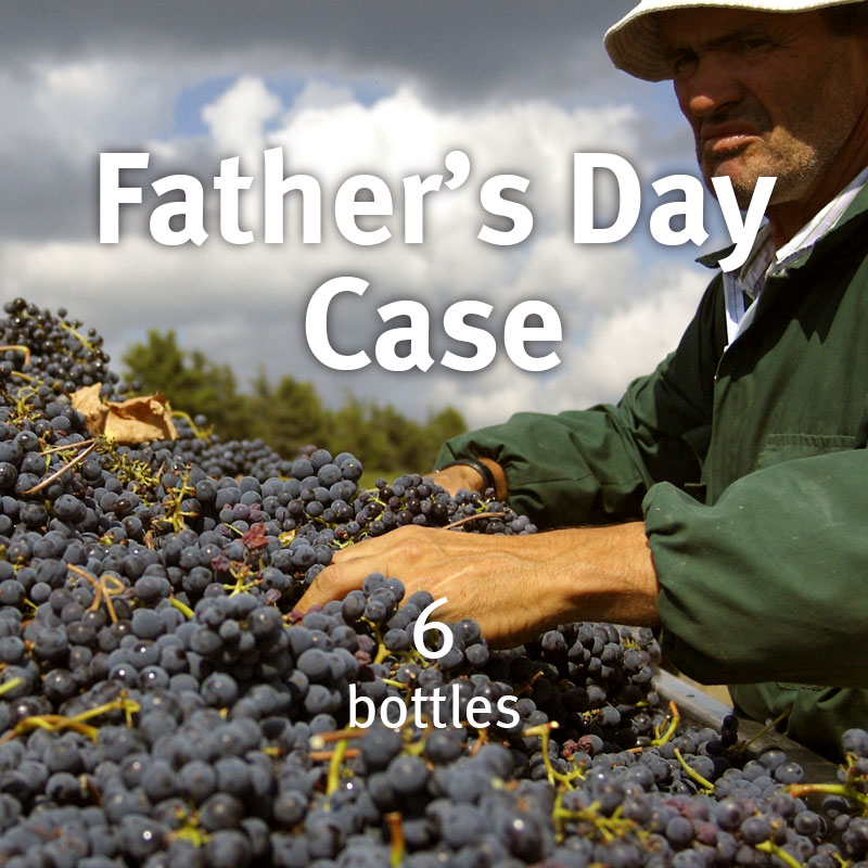 Father's Day mixed case
