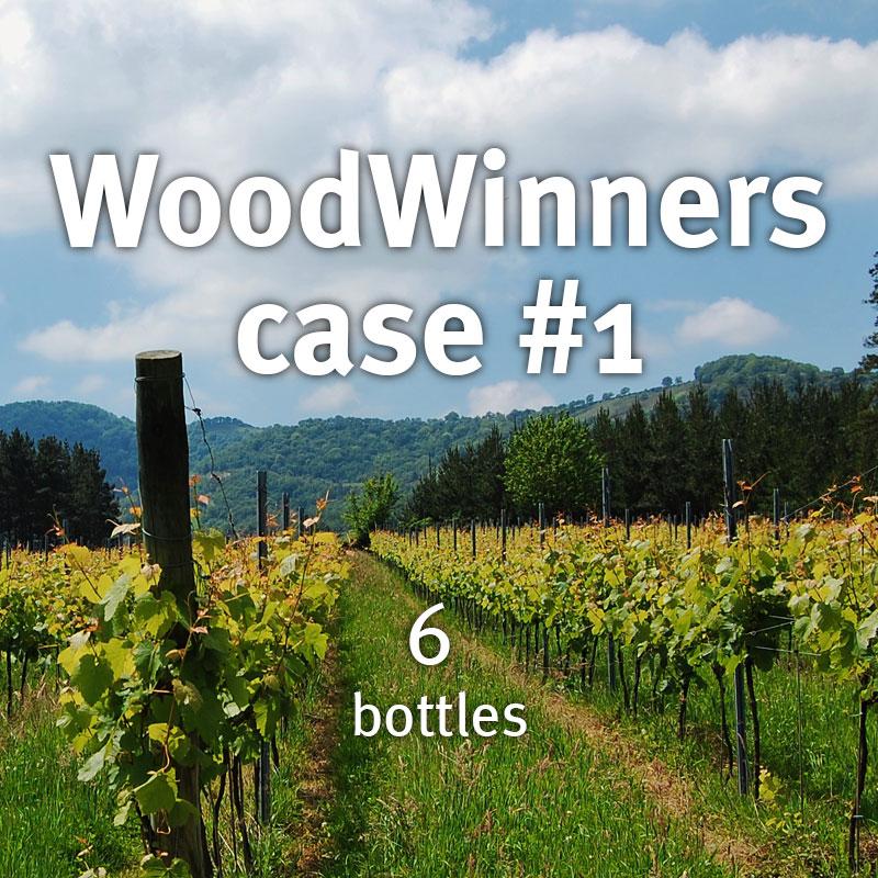 WoodWinners case 1