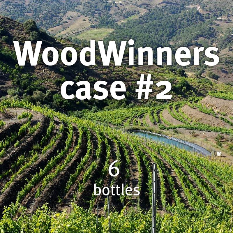 WoodWinners case 2